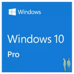 Windows 10 Professional 32 / 64 Bits FPP - Box