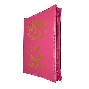 Bíblia Sagrada Letra Jumbo Com Harpa - Pink Zíper - Cpp