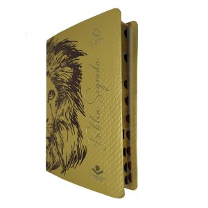 Bíblia Sagrada Jovem Leão Amarela Média 14x21cm Sbb