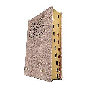 Bíblia Sagrada Edição Comparativa NVI E JFA Capa Luxo Bege