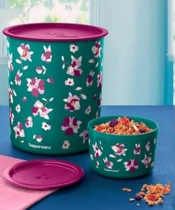 Kit Tupperware Super Instantânea Blz Flora 4.2 L + 575 Ml