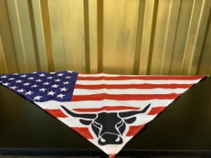 Bandana Made in Mud Americana
