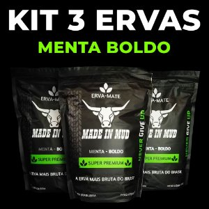 KIT 3 Ervas Mate Made in Mud  Menta-Boldo Premium + ADESIVO ERVA MATE