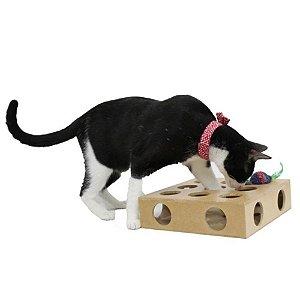 Brinquedo Toy Box com Bolinha para Gatos
