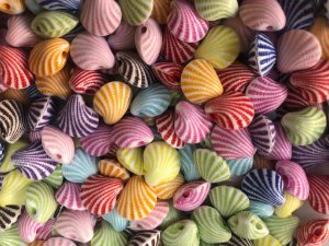 Passante Conchinha Colorida (11 mm) *Pacote com 20 gramas*