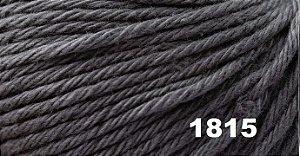 Bella Arte, 100g, 1815 - New Grey - TEX 590