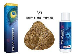 Wella Color Perfect Tinta 8/3 Louro Claro Dourado + Welloxon 20vol