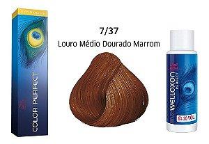 Wella Color Perfect Tinta 7/37 Louro Médio Dourado Marrom + Welloxon 20vol