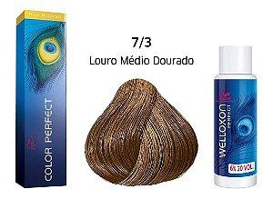 Wella Color Perfect Tinta 7/3 Louro Médio Dourado + Welloxon 20vol