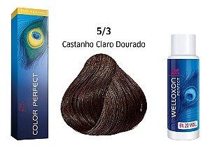 Wella Color Perfect Tinta 5/3 Castanho Claro Dourado + Welloxon 20vol