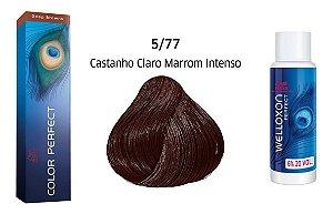 Wella Color Perfect Tinta 5/77 Castanho Claro Marrom Intenso + Welloxon 20vol