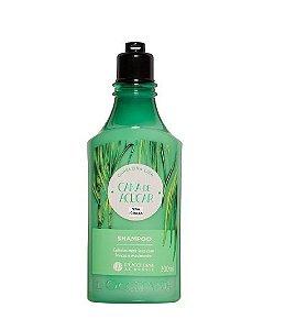 Loccitane au Bresil Shampoo Cana de Açúcar Cab Liso 300ml