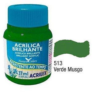 Tinta Acrílica Acrilex Brilhante 37Ml Verde Musgo 513
