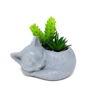 """Vaso de Gato """"Smelly Cat"""" c/ Leguminosa"""
