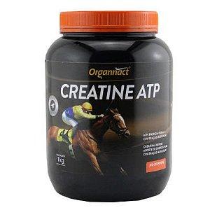 CREATINE ATP 1KG