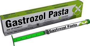 GASTROZOL PASTA 7,5GR