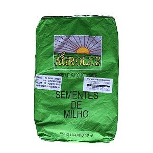 Sementes de Milho Variedades BRS Gorutuba - Saco com 10 kg
