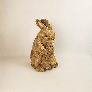 Mamãe e filhote coelho linha rústica 35cm