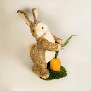 Coelho rústico colhendo cenoura 40cm