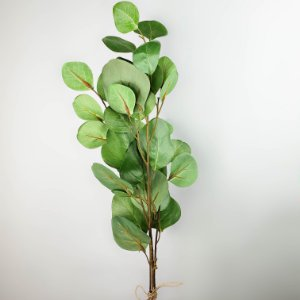 Haste de Eucalipto - verde - 75cm
