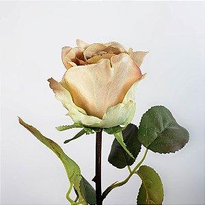Haste de Rosa - Bege - 50cm