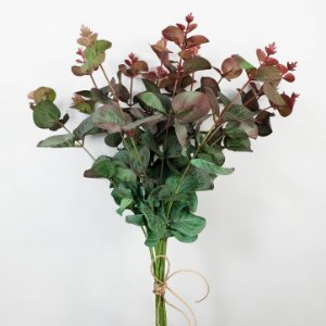 Mini Eucalipto Outonal - 50cm