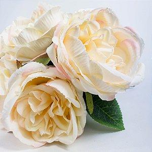 Buque 6 Rosas - Champagne