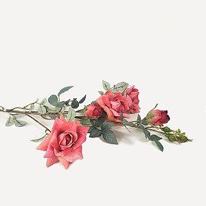 Haste de Rosa