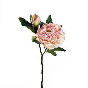 Haste de Peônia - Rosa