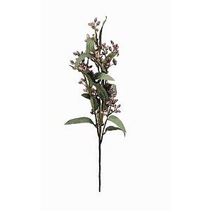 Haste de Sementes de Eucalipto - Rosa
