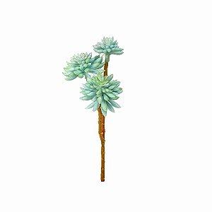 Haste de Aloe - Azul
