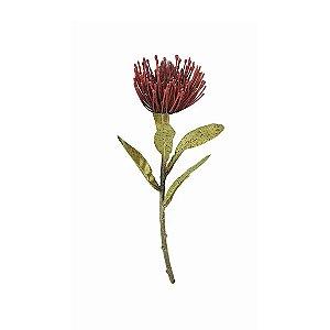 Haste de Protea - Marsala