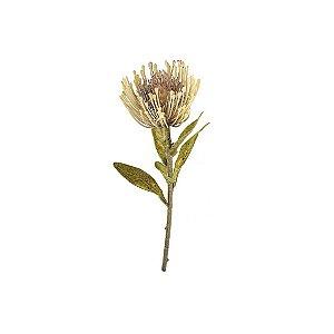 Haste de Protea - Palha