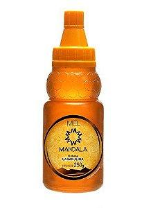 Mel Mandala Laranjeira 250g