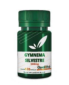 Gymnema Sylvestre 500mg 120 Cápsulas