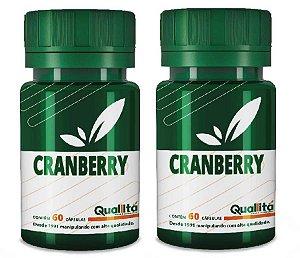 Cranberry 300mg – A fruta que auxilia no tratamento da infecção urinária