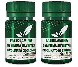 Faseolamina 500mg + Gymnema Silvestre 100mg + Picolinato de Cromo 150mg (120 Cápsulas)