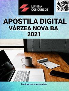 Apostila VÁRZEA NOVA BA 2021 Professor N II Educação Artística