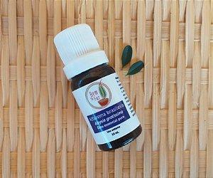Óleo essencial Alfazema brasileira