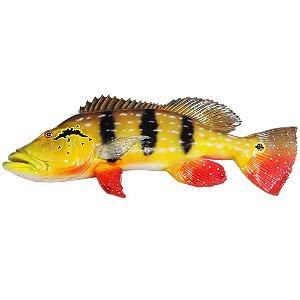 Peixe Tucunaré Paca de Parede 52cm de Resina Ornamental
