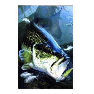 Placa decorativa Pesca 02 Bass Vertical - 20 x 30 cm
