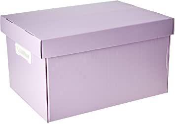 Caixa Organizadora The Best Box G Novaonda Lilas Pastel Polibras