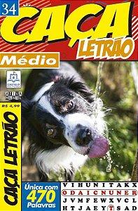 Revista Caca Palavras Letrao 34 Medio Ciranda Cultural