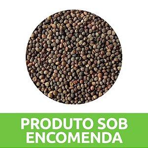 ADUBO VERDE ERVILHACA COMUM  (PRODUTO VENDIDO SOB ENCOMENDA)