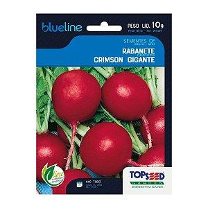 Semente Rabanete Crimson 10 g