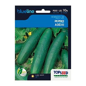 Semente Pepino Aodai 10 g