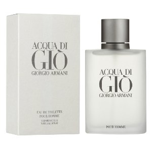 Acqua DI Gio Giorgio Armani Masculino 100 ml