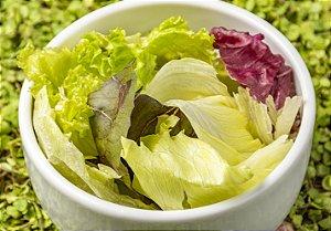 Salada Folhas Coloridas (Individual)