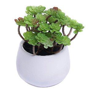 Plantinha Suculenta Artificial para Mini Vaso - Arvorezinha SH36812   Importado