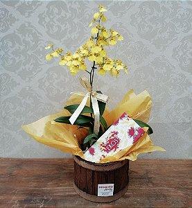 Orquídea e Sabonetes Sinfonia